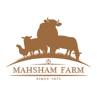 Mahsham